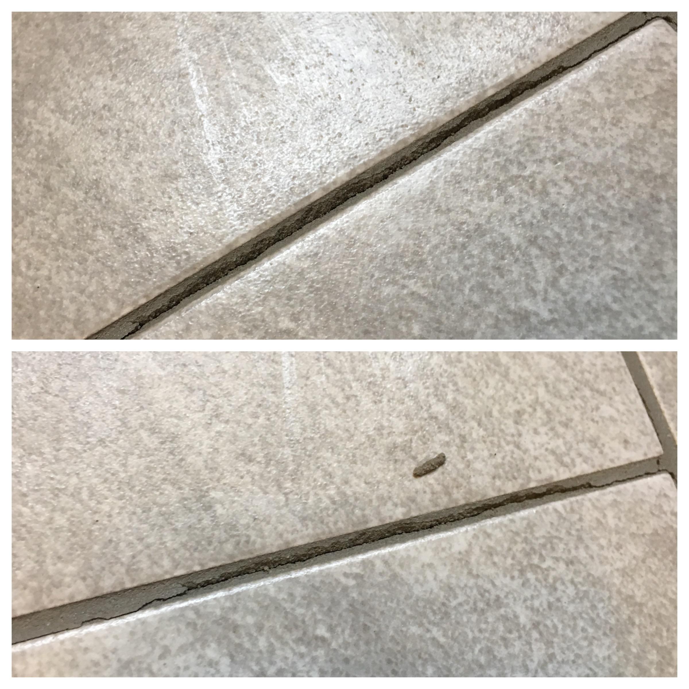 Floor tiles cracking